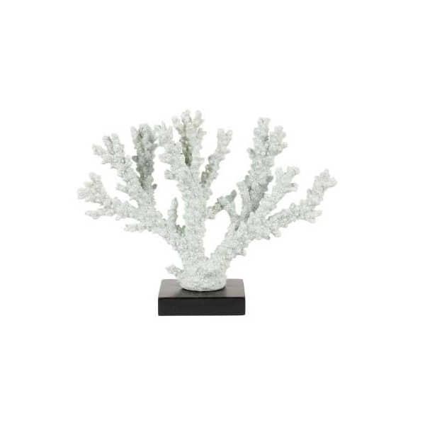 Coral Virten